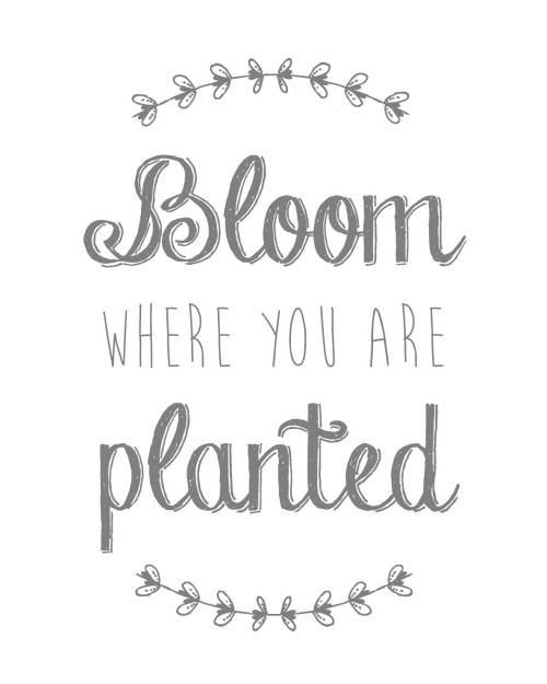 Bloom Where You Are Planted Free Printable